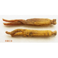 Whole Panax Korean Red Ginseng Root (Gift Packaging)