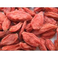 Goji Berries,  WolfBerry, Wolfberries,  Lycium, Gou qi zi