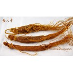 Whole Korean Panax  Red Ginseng Root, China Hong Shen 红参棒