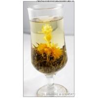Mo Li Xian Nv, Jasmine Fairy,oriental beauty,  Blooming Flowering Flower Tea