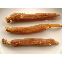 Panax  Korean Red Ginseng Root, Chinese Hong Ren shen 红人参