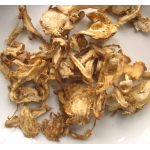 dang gui slices, Organic Sacred Herb ANGELICA ROOT Wicca Pagan